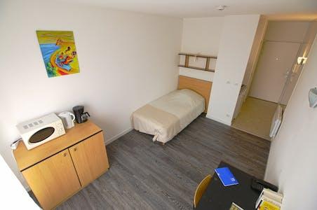 Studio-Apartment zur Miete von 01 Jun 2020 (Avenue du Général Leclerc, Vandœuvre-lès-Nancy)