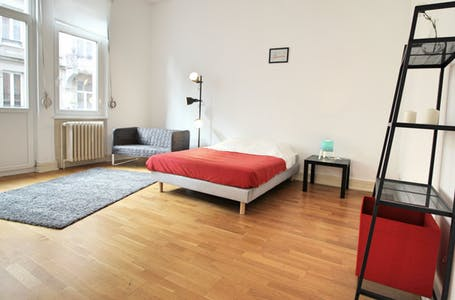 Room for rent from 24 Jun 2018 (Rue Wimpheling, Strasbourg)
