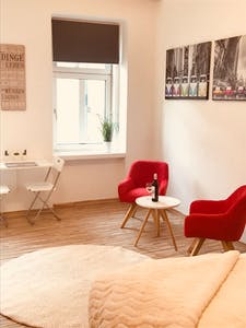Apartment for rent from 01 Jan 2020 (Beingasse, Vienna)