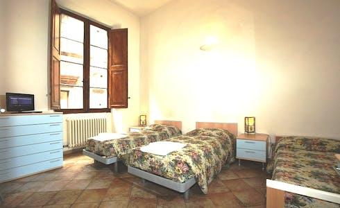 Stanza in affitto a partire dal 01 mag 2018 (Via del Porrione, Siena)