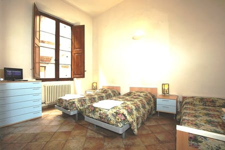 Room for rent from 16 Aug 2018 (Via del Porrione, Siena)