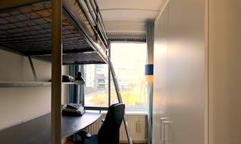Zimmer zur Miete von 01 Jan. 2019 (De Lairesselaan, Rotterdam)