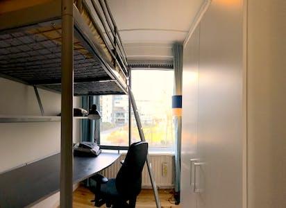 合租房间租从01 8月 2019 (De Lairesselaan, Rotterdam)