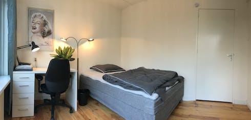 合租房间租从01 1月 2019 (De Lairesselaan, Rotterdam)