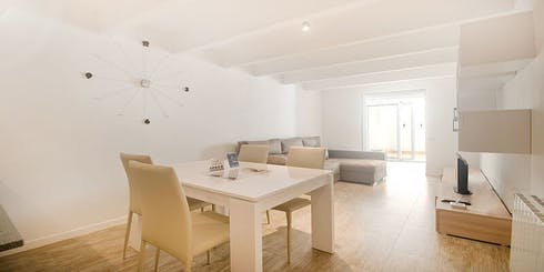 Apartment for rent from 01 May 2019 (Carrer del Camp, Barcelona)