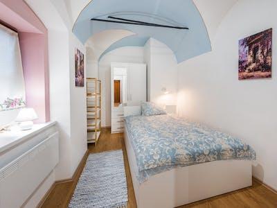Apartment for rent from 01 Oct 2019 (Križevniška ulica, Ljubljana)