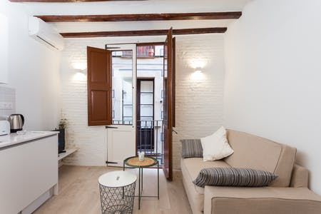 Apartment for rent from 01 Oct 2019 (Carrer del Malnom, Barcelona)