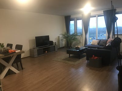Private room for rent from 13 Jan 2020 (Pieter Calandlaan, Amsterdam)