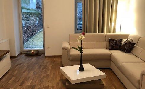 Apartamento de alquiler desde 15 abr. 2018 (Liechtensteinstraße, Vienna)