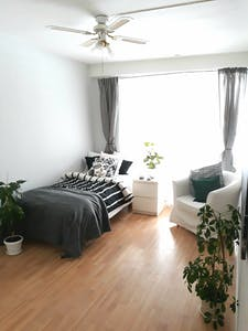 Room for rent from 19 Nov 2018 (Edvard Munchs vei, Oslo)
