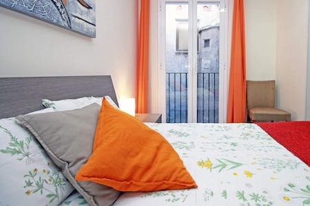 Private room for rent from 01 Mar 2019 (Carrer de l'Hospital, Barcelona)