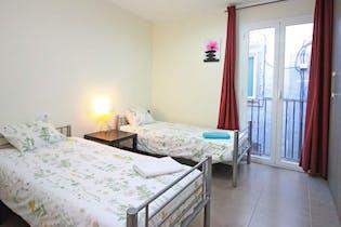 Room for rent from 24 Dec 2018 (Carrer de l'Hospital, Barcelona)