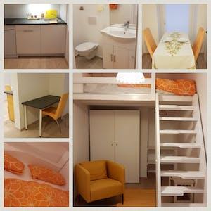 Apartment for rent from 09 Jun 2019 (Untere Weißgerberstraße, Vienna)