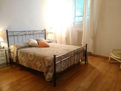 Private room for rent from 21 Feb 2020 (Via dei Serragli, Florence)
