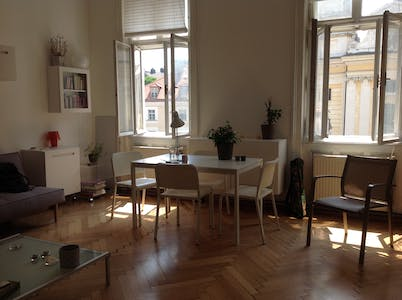 Private room for rent from 01 Jan 2020 (Neustiftgasse, Vienna)