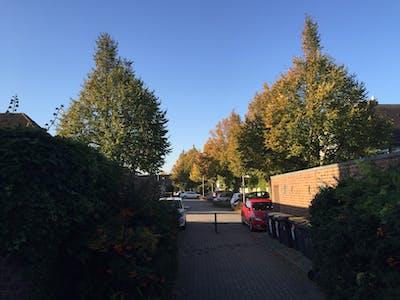 Hans-Berge-Straße