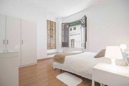 Appartamento in affitto a partire dal 19 ago 2018 (Cuesta del Chapiz, Granada)
