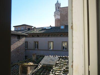 合租房间租从20 8月 2018 (Via di Calzoleria, Siena)