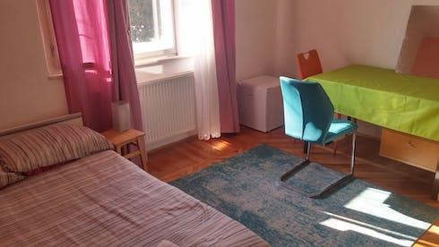 WG-Zimmer zur Miete ab 01 Okt. 2020 (Cesta v Mestni log, Ljubljana)