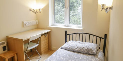 Private room for rent from 05 Jan 2020 (Usher Street, Dublin)