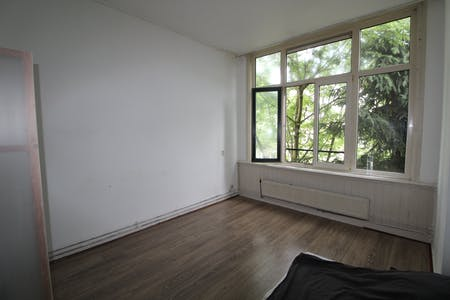 Private room for rent from 01 Aug 2019 (Adrien Mildersstraat, Rotterdam)