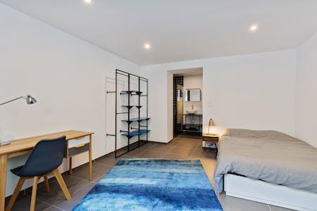 Private room for rent from 01 Jan 2020 (Waterloosesteenweg, Ixelles)