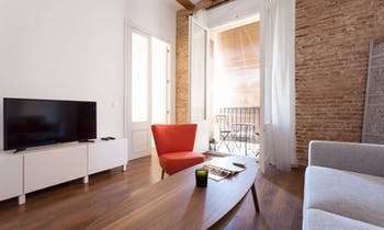 Apartment for rent from 24 Aug 2018 (Carrer dels Còdols, Barcelona)