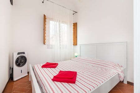 Apartment for rent from 16 May 2020 (Via della Condotta, Florence)