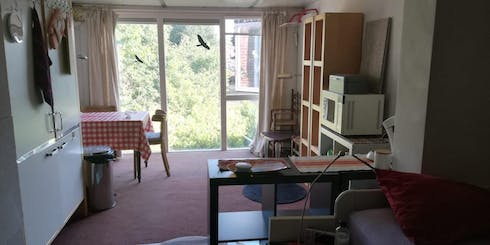 Private room for rent from 06 Jul 2020 (Thomas van Diessenstraat, Goirle)