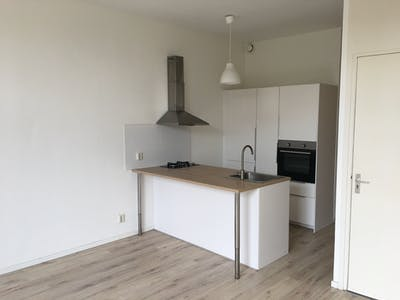 Apartment for rent from 01 Mar 2019 (Burgemeester Meineszlaan, Rotterdam)