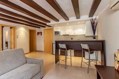 Apartment for rent from 15 Apr 2020 (Carrer de Sant Pau, Barcelona)