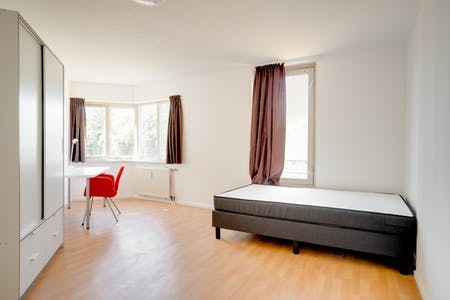Private room for rent from 01 Sep 2019 (Jan Ter Laanplaats, Rotterdam)