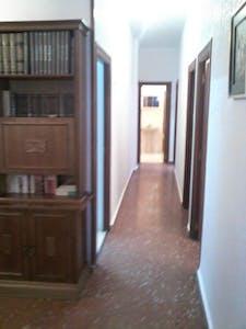 Quarto privativos para alugar desde 01 Feb 2020 (Plaza Nueva de San Antón, Murcia)