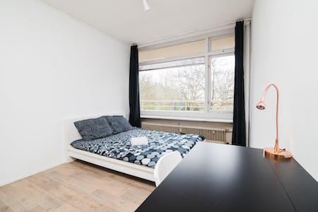Private room for rent from 17 Jan 2019 (Livingstonelaan, Utrecht)