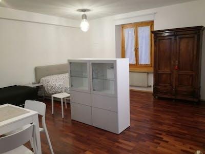 整套公寓租从01 3月 2019 (Via degli Orbi, Trento)