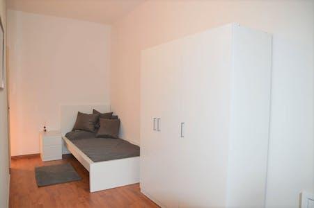 Habitación privada de alquiler desde 16 Feb 2020 (Via Marsala, Trento)