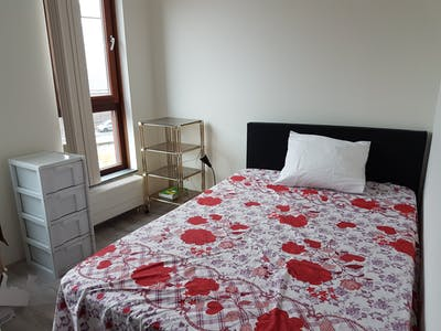 Room for rent from 30 Aug 2018 (Brielselaan, Rotterdam)