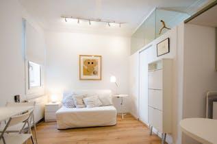 Apartment for rent from 30 Jun 2019 (Carrer de Calvet, Barcelona)