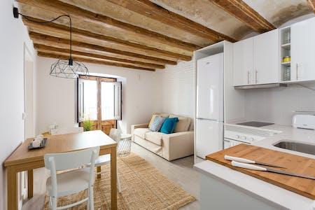 整套公寓租从01 4月 2019 (Carrer dels Escudellers, Barcelona)