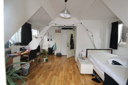 Private room for rent from 01 Aug 2019 (Berkelselaan, Rotterdam)