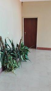 Chambre à partir du 01 Feb 2019 (Via Leonetto Cipriani, Bologna)