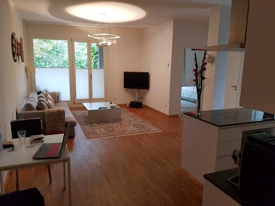 Apartment for rent from 16 Jan 2019 (Bauhofstraße, Berlin)