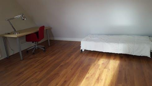 Private room for rent from 01 Feb 2020 (Laan van Groenewegen, Delft)