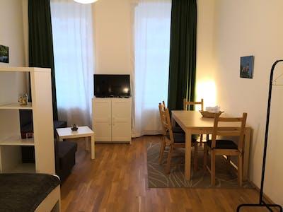 Wohnung zur Miete ab 01 Juli 2020 (Lacknergasse, Vienna)