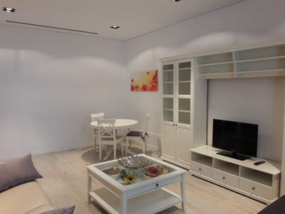 Apartment for rent from 01 Jan 2019 (Carrer de Trafalgar, Barcelona)