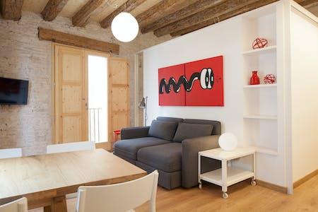 Apartamento para alugar desde 12 jan 2019 (Carrer d'En Boquer, Barcelona)