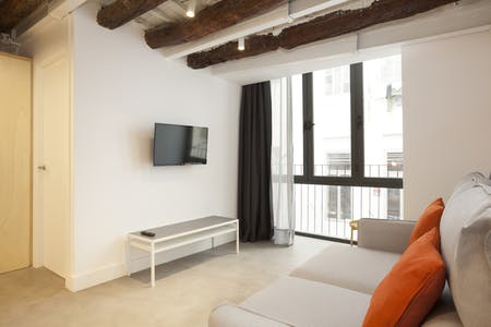 Apartment for rent from 17 Apr 2019 (Carrer de Sant Pere Mitjà, Barcelona)