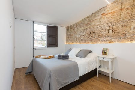 Apartment for rent from 22 Feb 2019 (Carrer de Sant Pau, Barcelona)