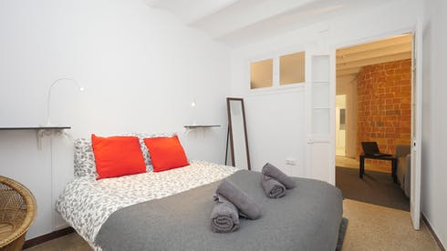 Apartment for rent from 15 Dec 2018 (Carrer del Poeta Cabanyes, Barcelona)