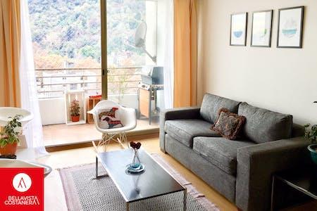 Apartment for rent from 22 Jan 2020 (Dardignac, Recoleta)